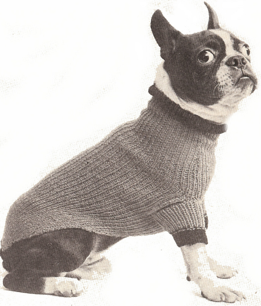 Patterns - DogGoneKnit.com: Free Dog Sweater Knitting and Crochet