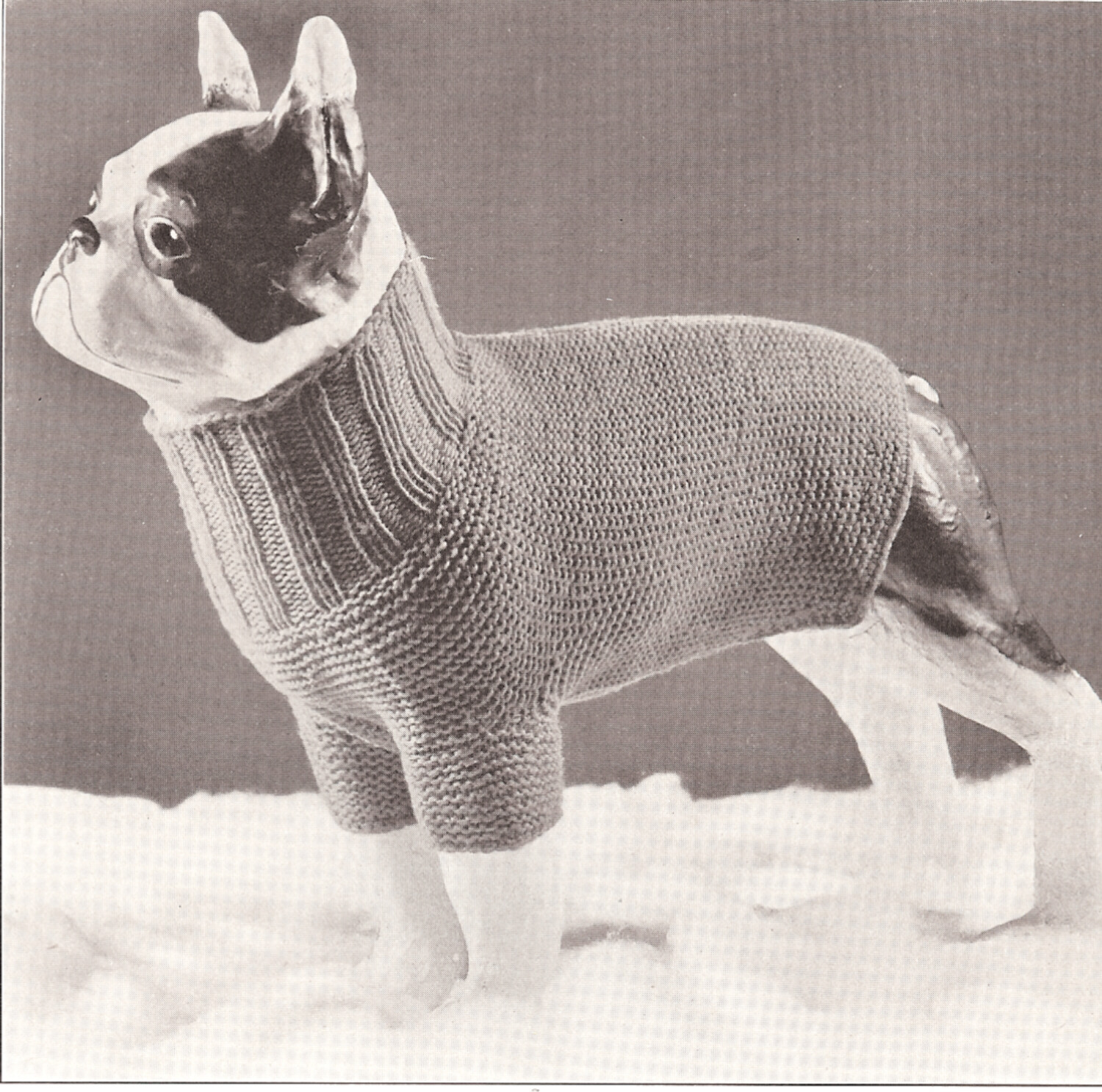 Vintage Antique Knitting PATTERN to make Dog Sweater Coat Turtle ...