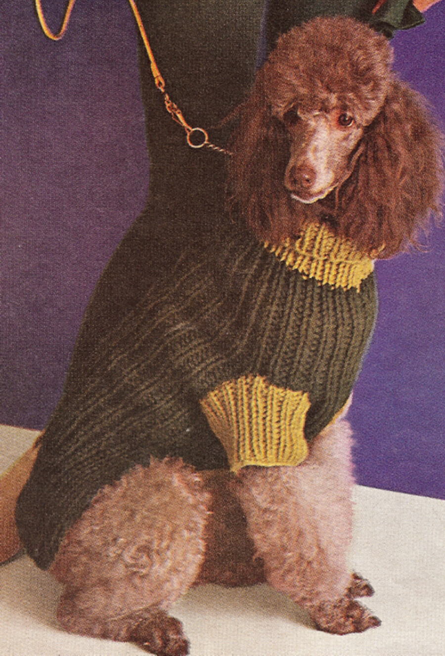 Knitting Pattern Large Dog Coat : Vintage Dog Bulky Sweater Coat Knitting Pattern   eBay