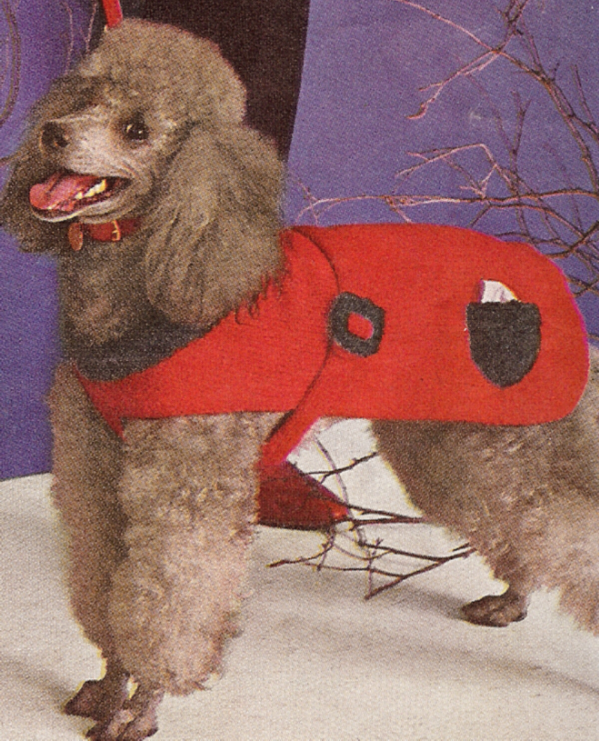 Diy Knitting Patterns : Vintage Knitting PATTERN Dog Sweater Coat Small Med Lg eBay