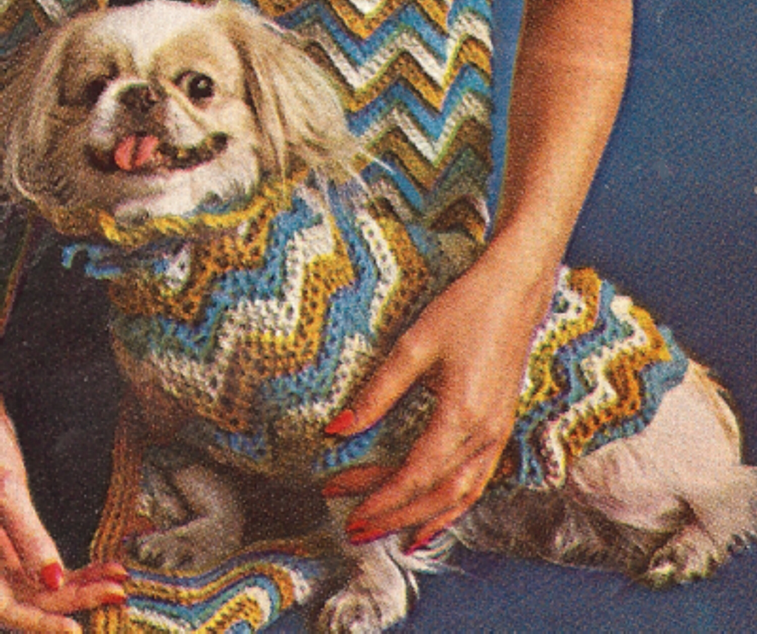 Crochet Pattern For Yorkie Sweater : Vintage Dog Sweater Coat Hat Puppy Crochet Pattern eB ...