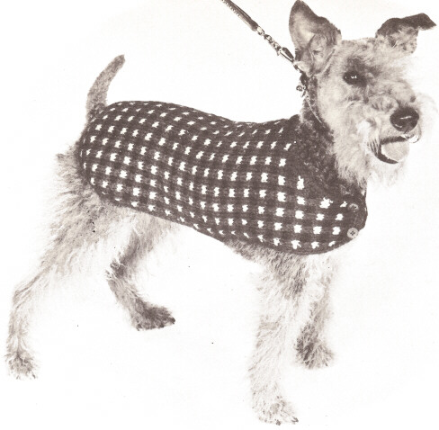 Knitting Patterns Dog Accessories : KNITTING PATTERN DOG CLOTHES 1000 Free Patterns