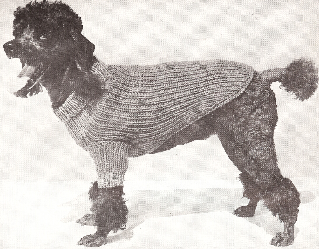 Vintage Knitting Pattern to Make Dog Sweater Coat Blanket ...